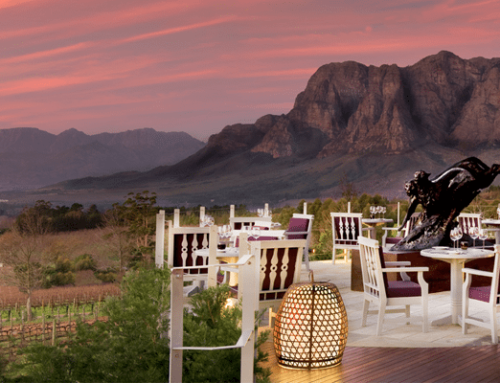 Top South African Winery Restaurants with Spectacular Views