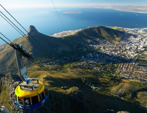 Cape Town Must-Dos