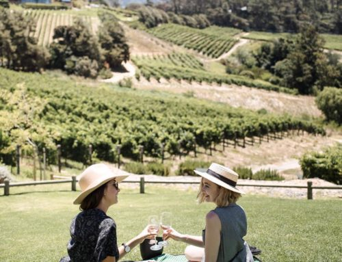 Taste Your Way Through South Africa at These 10 Wineries